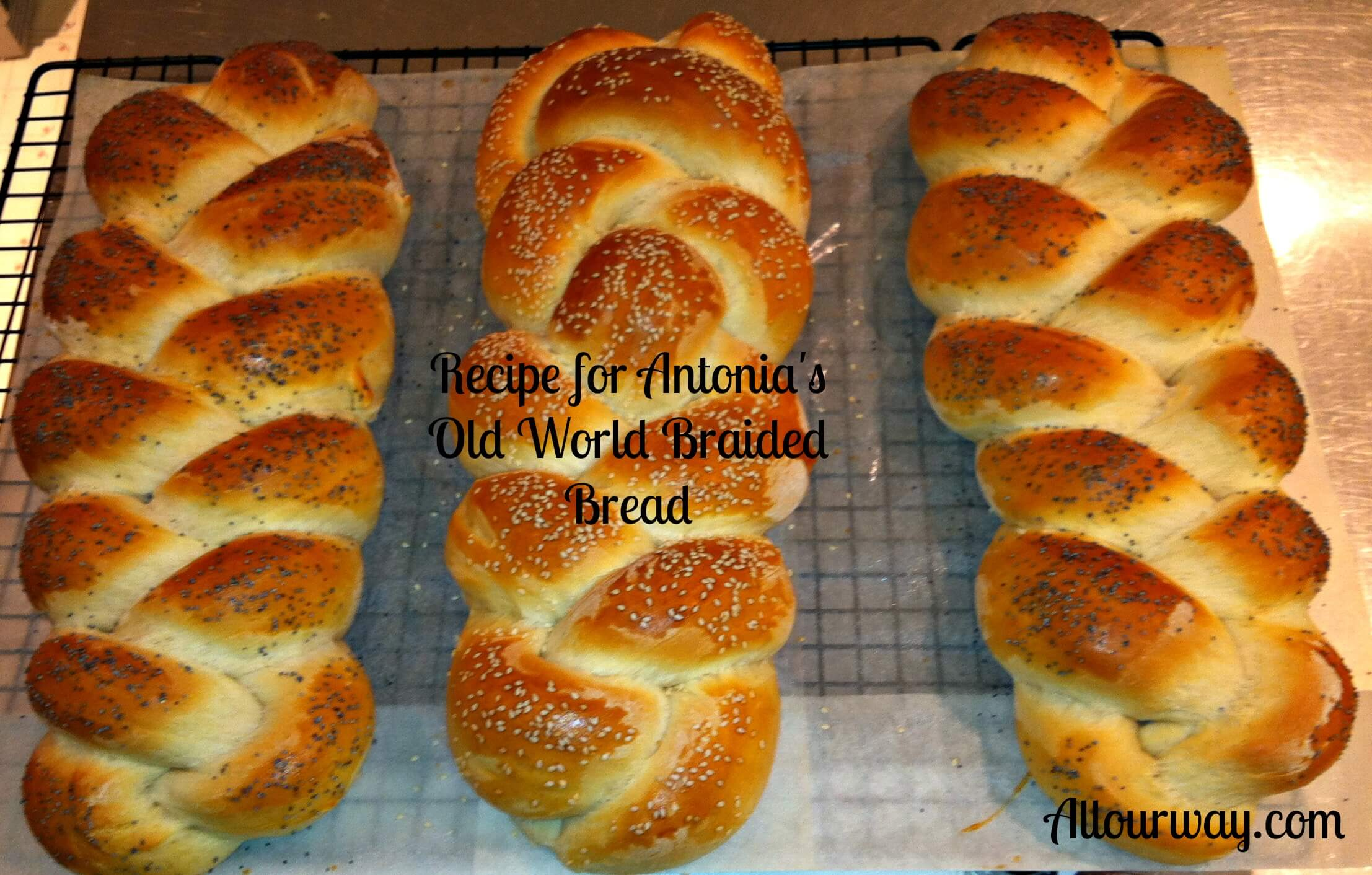 Antonia's Old World braided Bread at Allourway.com