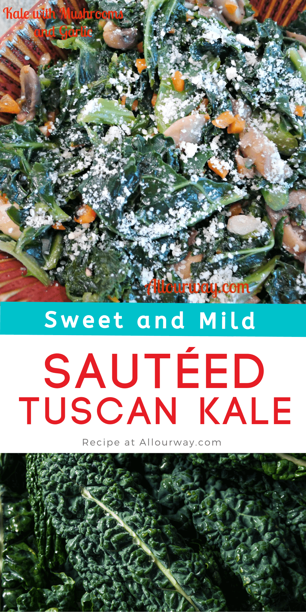 Lacinato Tuscan Kale is a popular Italian vegetable that is sweeter and more tender than regular kale. In this recipe we sauté it in extra virgin olive oil with fragrant garlic, earthy rich mushroom, and spicy red pepper flakes. Then we braise it with chicken or vegetable broth until the kale wilts. We finish the cavalo nero with fresh lemon juice and parmesan cheese. A delicious vegetable side that the whole family will love.