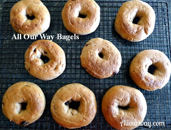 Homemade Bagels With Cinnamon Dried Fruits And Nuts
