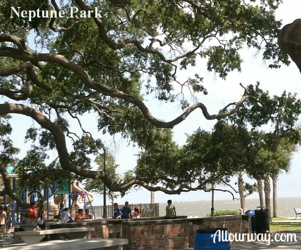 Ancient oaks provide shade at Neptune Park's Picnic Area.