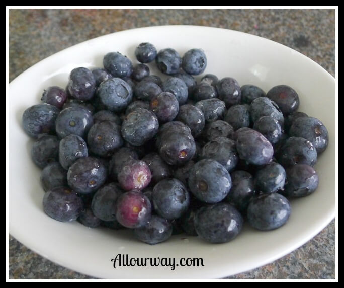 Fresh Blueberries for Blueberry Bottom Cream Pie at allourway.com
