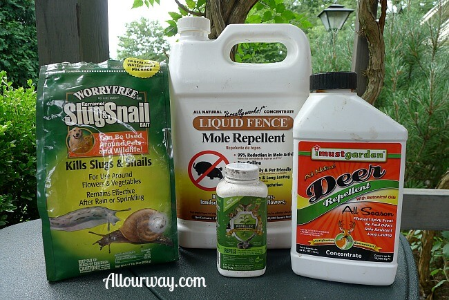 Garden Repellents we've used for moles, voles, deer, slugs at allourway.com
