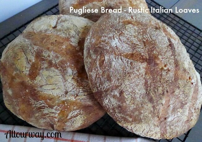 Pugliese Bread – An Italian Rustic Loaf from Puglia Region