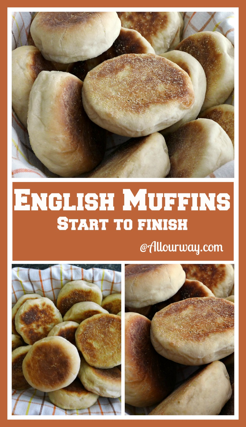 collage of English Muffins Start to Finish gives the instructions for making these wonderful versatile muffins @allourway.com