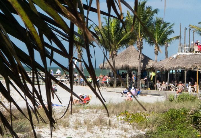 Arrivederci Venice Florida
