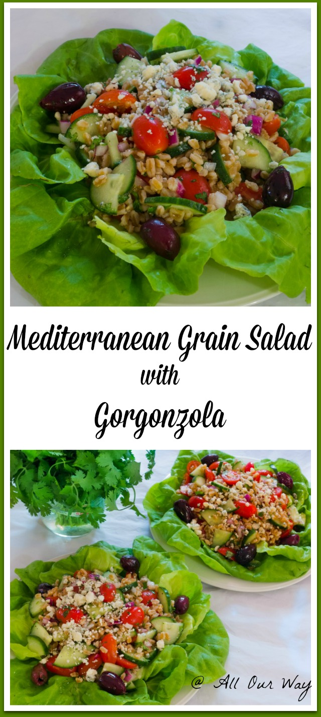 Mediterranean Grain Salad with Gorgonzola is a light summery salad using farro as the grain @allourway.com