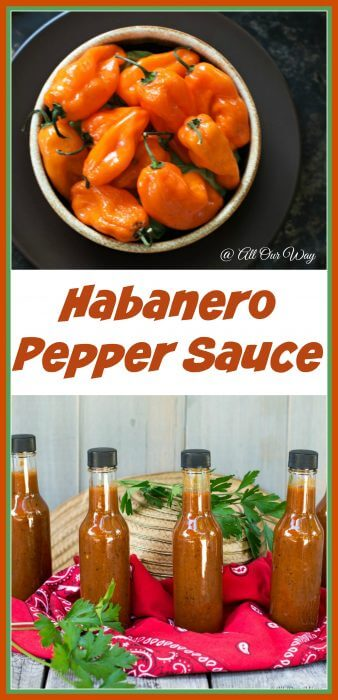 Light My Fire Habanero Pepper Sauce has fire with a touch of sweet @allourway.com