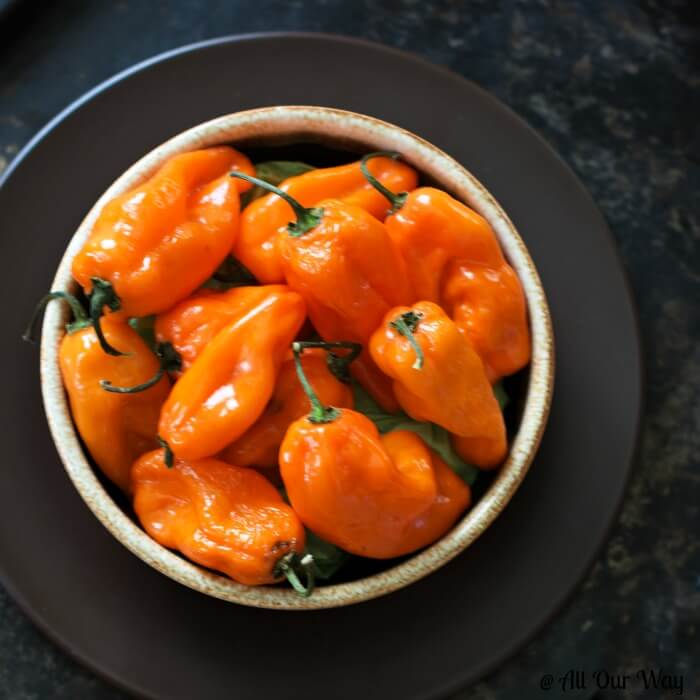 Beautiful orange habanero peppers in a brown bowl that's a brown plate.