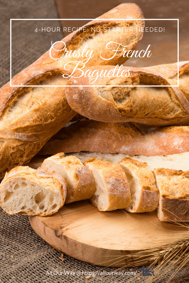 This recipe produces baguettes or rolls such as you'd find in a French Bakery. The bread doesn't need a starter and it can be ready in 4 hours. Now you can have bakery bread in your own home in no time at all. Yeast bread isn't difficult to make - we show how you can have hot homemade loaves from your oven any time you want. #baguettes, #nostarterbread, #Frenchrolls, #4hourbaguettes, #onedaybaguettes, #Frenchbaguettes, #bakerystylebreadrecipe, #baguetterecipe