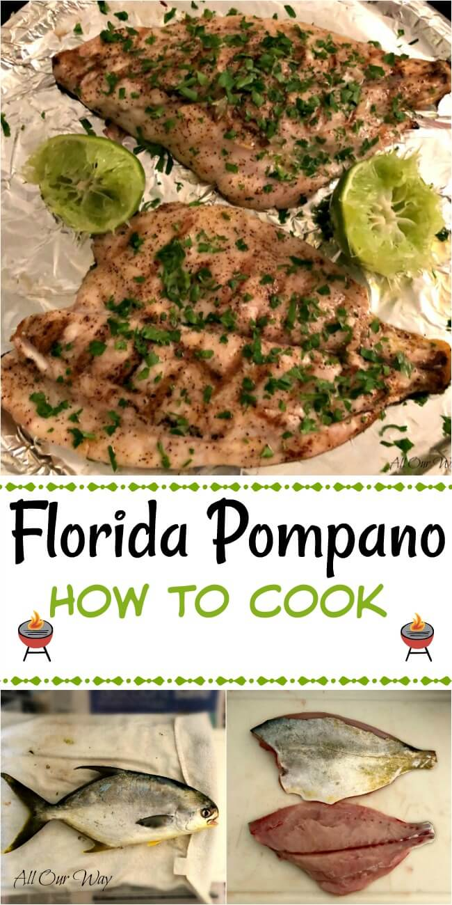 Baked Whole Pompano Fish Recipes Dandk Organizer