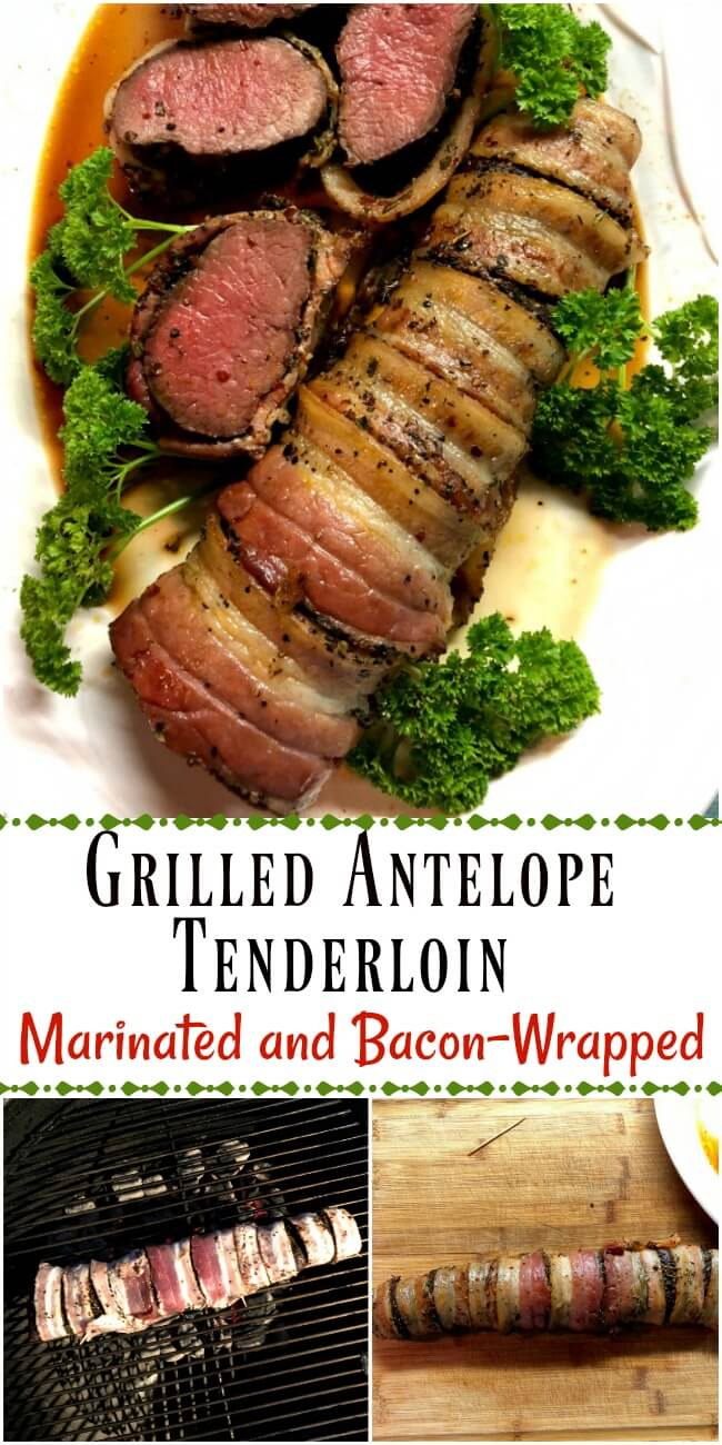 Grilled bacon-wrapped antelope tenderloin on a white plate with several meat slices and parsley surround the plate.
