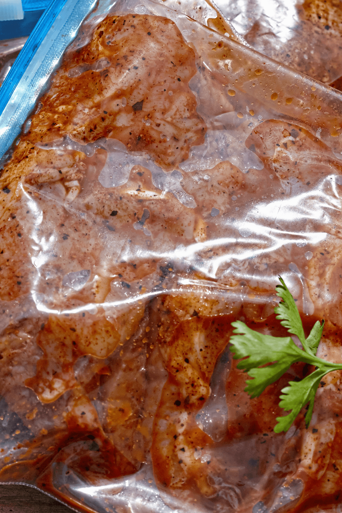 Pork marinating in the all-purpose marinade.